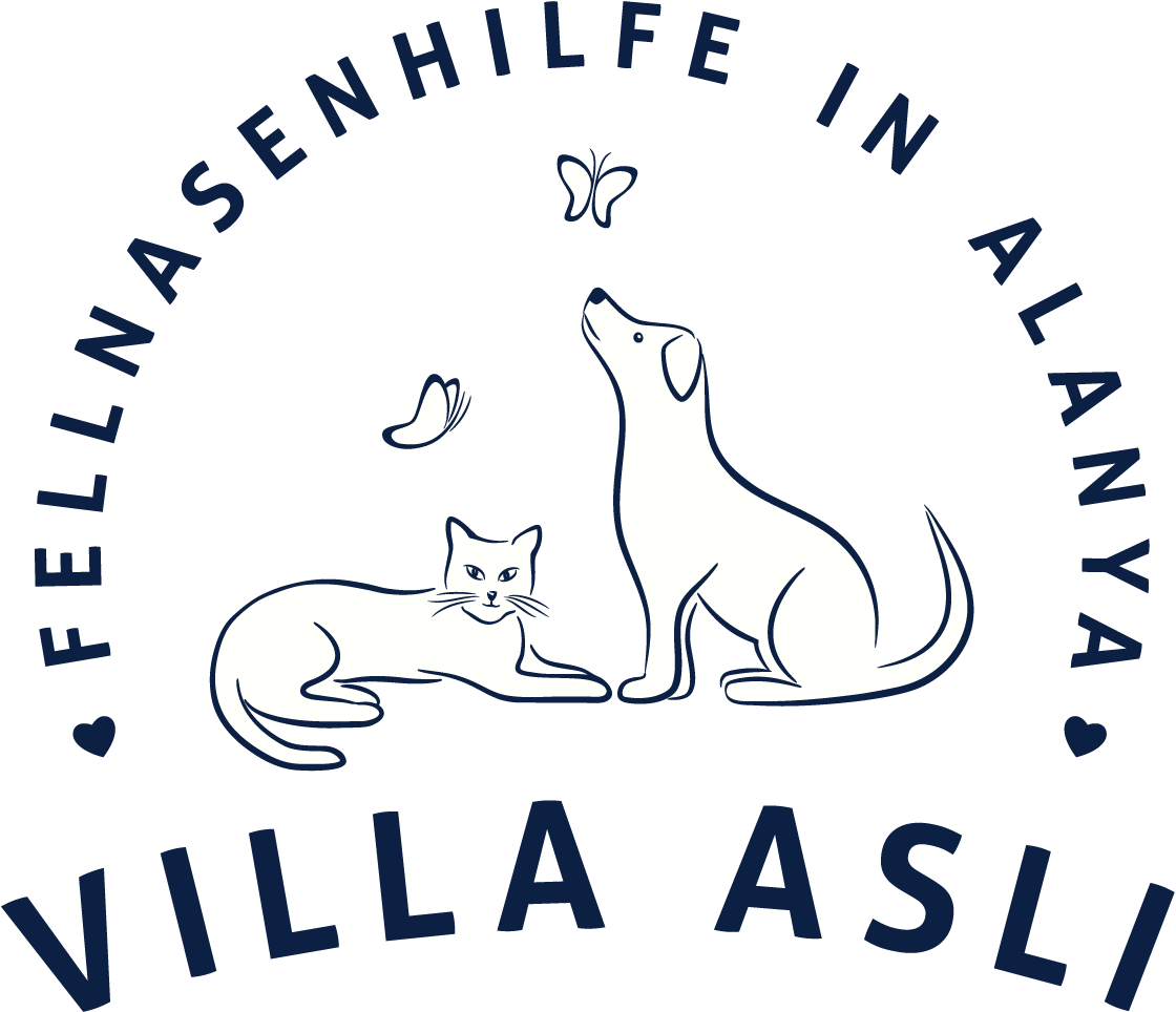 Fellnasenhilfe Villa Asli